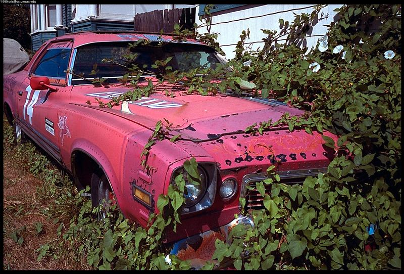 Junk Cars Images with their old junk cars